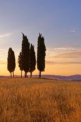 DSC03366 (a.saadhoff) Tags: toskana toscana valdorcia zypressen cipresso landscape landschaft sonnenaufgang sunrise