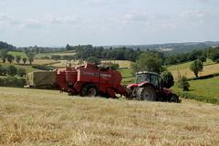 Massey Ferguson 6480 et MF 187 (Philippe-03) Tags: masseyferguson tracteur tractors campagne agriculture foin