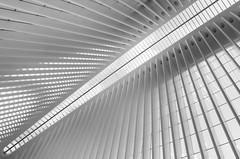 Oculus minimalistic, WTC Transit Hub, New York City (Pix-elist) Tags: new york city oculus minimal best ever santiago calatrava path station world trade center