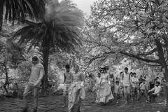 ADS_0000110092 (dickysingh) Tags: ranthambore ranthambhore hindu festival