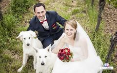 Hochzeitsphotos-Jana-Philip-73 (hochzeitsphotos-eu) Tags: fotograf hochzeitsfoto hochzeitsfotograf hochzeitsfotografie hochzeitsfotos hochzeitsphotos wedding weddingphotography