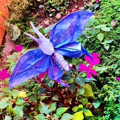 Pappilon (lucasvianakf) Tags: colors butterfly garden origami purple works papiroflexia nguyen pappilon