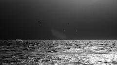 Kitesurf Lagoa da Conceio, Florianpolis, SC (Ed Andrade Jr.) Tags: kite sc florianpolis kiteboarding kitesurfing kitesurf lagoadaconceio edadndradejr