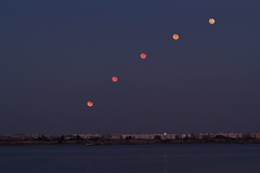 Lunar-Eclipse (abhishek.deopurkar) Tags: shadow sky moon india night eclipse blood path space arc science astronomy maharashtra thane phase lunar phases penumbra umbra