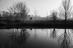 electric wheelchair drive by.jpg (Jochem.Herremans) Tags: old city autumn trees sky white man black reflection tree water beautiful river landscape drive blackwhite belgium belgie wheelchair electricity lonely emotions handicapped electricwheelchair rolstoel lokeren