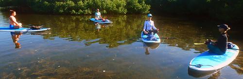 5-1-15-Paddleboard-Yoga-Teacher-Training-Sarasota-FL 22