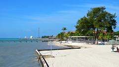 Key West (Florida) Trip, November 2014 3191Rif 9x16 (edgarandron - Busy!) Tags: keys florida keywest floridakeys higgsbeach westmartellotower keywestgardenclub