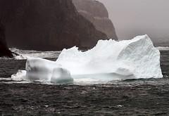 First Iceberg of the Season (Karen_Chappell) Tags: ocean seascape cold ice nature newfoundland landscape scenery scenic atlantic iceberg nfld torbay atlanticcanada avalonpeninsula