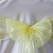 "yellow_organza sash • <a style=""font-size:0.8em;"" href=""http://www.flickr.com/photos/131351136@N06/17665129212/"" target=""_blank"">View on Flickr</a>"