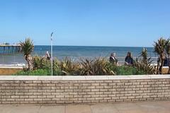 IMG_1950Site4 (janohighway) Tags: summer sculpture art design seaside community selection environment choice recycling collective debate teignmouth outdoorart ecoart sculpturetrail devonuk womenartists trail2016