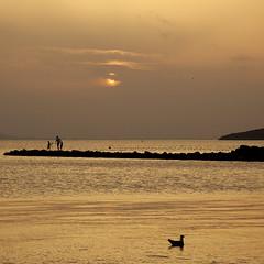 Atardecer dorado - Golden sunset (nuska2008) Tags: nuska2008 marmanor atardecerdorado nanebotas pescadores lamangadelmarmenor murcia espaa gaviota