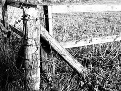 Keep Out (flamesworddragon) Tags: monochrome fence freedom trapped wire barbed keepout