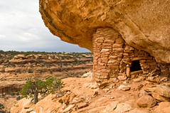 Road Canyon (BLMUtah) Tags: cliff southwest history home archaeology utah ruins respect indian culture lodge american cedar sweat navajo artifact mesa kiva protect blm dwelling pictograph puebloan sherd respectandprotect