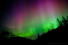 Pink Purple & Green (Tristan Rayner) Tags: red sky colour night stars aurora nightsky borealis seatosky deepsky