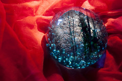 Longing for the woods (exploding-girl) Tags: crystal witch magic woods forest magia cristal rojo azul bosque red blue witchy