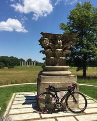 Classic Design at the Arboretum (Mr.TinDC) Tags: bike bicycle washingtondc dc arboretum corinthian f8 dogma pinarello nationalarboretum capitolcolumns