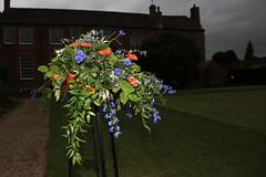 Walled Gardens of Cannington (lens buddy) Tags: uk flower nature garden flora somerset flashphotography englishgarden cannington canoneosdigital sedgemoorcameraclub