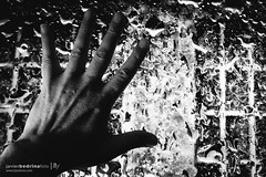 My Other Hand (Javier A Bedrina) Tags: show people art wet water rain sign closeup advertising person hand message close symbol crystal background fingers gesturing advertisement business human editorial concept conceptual gesture greeting isolated bedrina