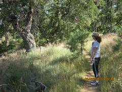 Laguna Hike 6-26-16 - Los Gatos and Chico Ravines - Enjoying the shade on a warm day. (Bob_ Perry) Tags: laguna mtlaguna mountlaguna lasgatos losgatos chicoravine lmva lmra lagunamountainrecreation clevelandnationalforest lagunamedow