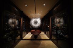 Hotel@The Shilla seoul_KOREA_01 (Ripple design) Tags: lighting hotel sony voigtlaender korea 12mm wideheliar 7s