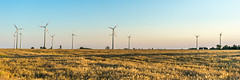 Wind Power (deyveone) Tags: summer field energy power wind grain renewable