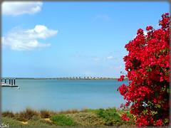Huelva (Espaa) (sky_hlv) Tags: espaa rio river andaluca spain huelva costadelaluz rioodiel radehuelva avenidafranciscomontenegro