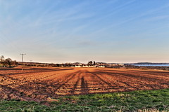 Across the field (ricoprest) Tags: landscape dundee hdr dunde