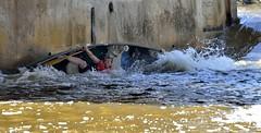 (Roger Daigle) Tags: race river nikon canoe 28 300 nikkor 70200 raisin d610 17tc f4d vrii