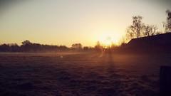 Vielversprechend (Duc-Dalton) Tags: fog nebel morgen idylle niederrhein