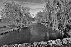 The Great Stour, Godmersham (Aliy) Tags: bridge trees blackandwhite white black tree rural river blackwhite kent village willow willows stour godmersham greatstour