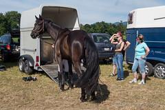 DSC03764_s (AndiP66) Tags: horse sports sport schweiz switzerland sony may luzern mai concours pferd equestrian solothurn ch horsejumping wettbewerb springen 2015 auffahrt kantonsolothurn pferdesport springreiten wolhusen andreaspeters wolfwil cantonofsolothurn pferdespringen grueb martinameyer dscrx100ii rx100ii rx100m2 dscrx100m2 auffahrtspringen
