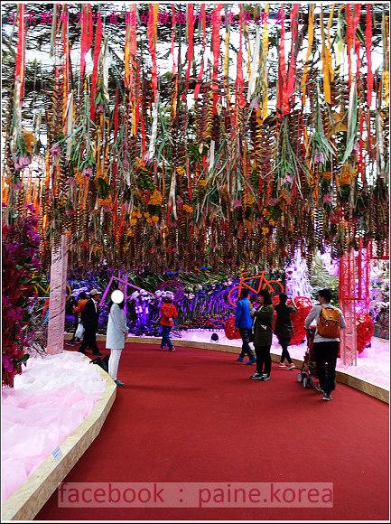 高陽國際花卉博覽 (18).JPG