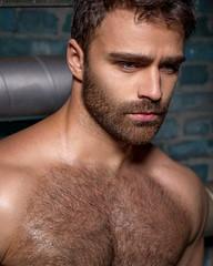 1186 (rrttrrtt555) Tags: hairy muscles hair beard eyes masculine chest stare shoulders stubble