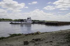 MississippiRiver_SAF8641 (sara97) Tags: river outdoors missouri mississippiriver riverboat tugboat saintlouis barge riverbarge photobysaraannefinke copyright2016saraannefinke