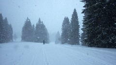 The snow comes (t.hammock) Tags: les skiing nordic rousses