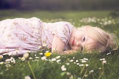 The start of Summer (abigail.caulton) Tags: flowers summer portrait love grass photoshop outdoors 50mm spring child blueeyes like award lie favourite lightroom gtg greaterthangatsby