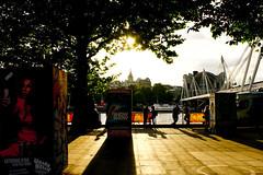 River Thames (fabiopaivareis) Tags: inglaterra england london honeymoon londoneye londres rodagigante luademel
