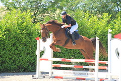 IMG_0774 (Bas & Emily) Tags: horses horse holland nature netherlands sport spring jump jumping outdoor nederland natuur flevoland wedstrijd manege paard paarden horsejumping amazone springen springwedstrijd hindernis voorronde rsva