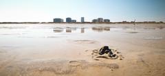 The edge of Belgium (monsieur I) Tags: seascape beach wet water sport sand europa europe belgium belgian constructions flanders wetreflections belgianseaside monsieuri