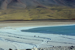 Lost in the desert (malyeena) Tags: lake nature desert salt bolivia altiplano lonelyness