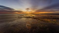 Rock Shelf (scotty-70) Tags: ocean morning clouds sunrise dawn rocks sony voigtlander monavale rockshelf