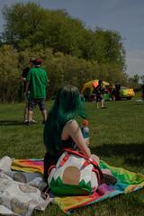teddybearpicnicday-21 (claire.pontague) Tags: bear park party kite sunshine outdoors picnic teddy stage saskatoon dancefloor djs 2016
