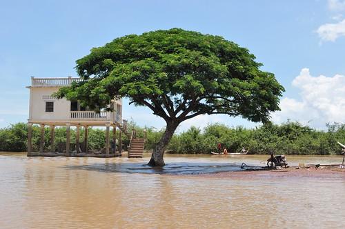 lac tonle sap - cambodge 2014 11