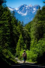 Hiking in the Tyrollean Alps (JTrojer) Tags: trees mountain alps forest austria tirol hiking hike alpine wald tyrol innsbruck austrianalps trojer jtrojercom tirolfoto