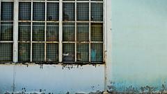 Lost facade (paul.buetow) Tags: facade old windows broken glass window wall school