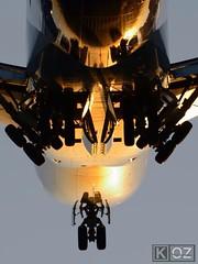 It's getting dark. Time to come in! (ChicagoKoz (ORDSpotter) @Kozphotog) Tags: sunset chicago airplane inflight nikon commerce aircraft aviation flight jet cargo landinggear boeing heavy qantas ord freight pilot 747 airliner 747400 jetliner kord 74747uf chicagoohareinternationalairport b744 atlasaircargo d7100 n493mc chicagokoz kevinkoske fly2ohare aircraftdeparture flyohare aircrafteparture