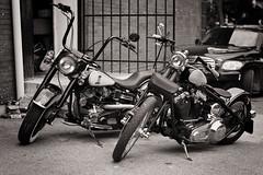 Brothers (Metro Tiff) Tags: road shop freedom twins open brothers culture lifestyle harleydavidson heads motorcycle blocks custom build sh bikers repairs alchopper
