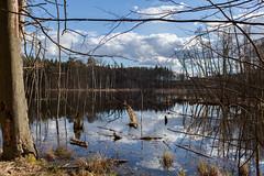Schweingartensee-1 (Faren Matern) Tags: