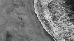 Versus (lluiscn) Tags: sea dog naturaleza blanco beach portugal nature water person persona mar sand negro playa natura bn arena perro terra blanc aigua negre gos platja nazaré punt sorra zenital cenital