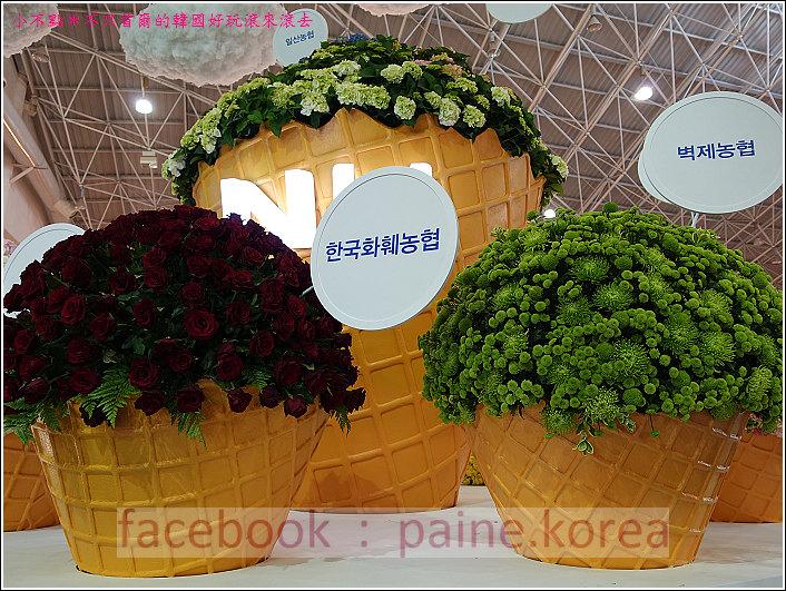 高陽國際花卉博覽 (48).JPG